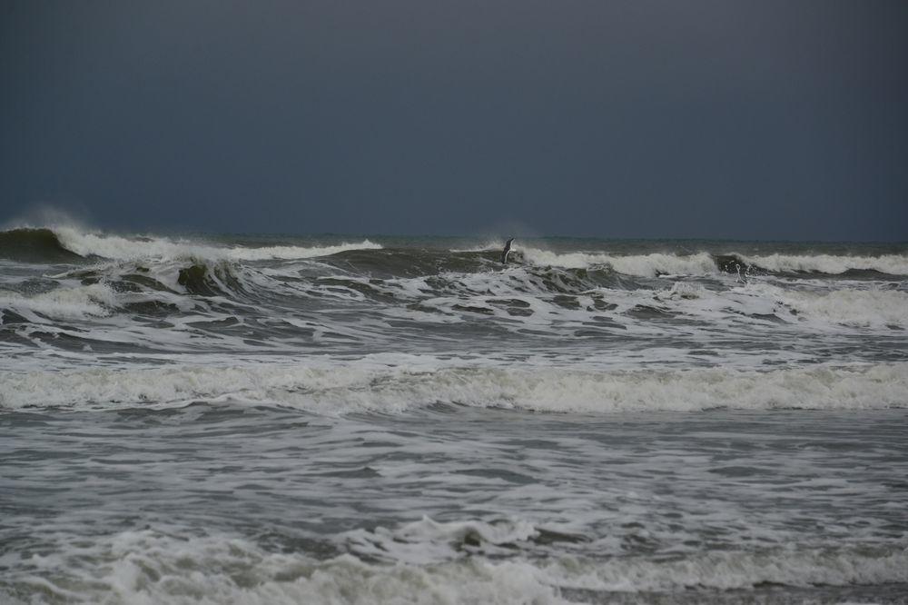 冬の波-1