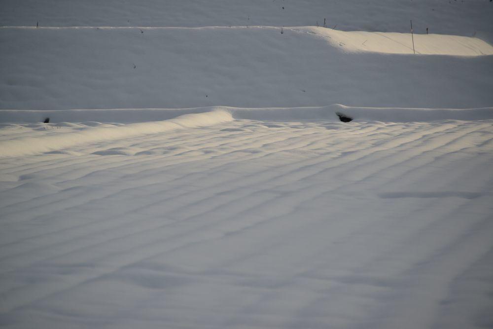 雪の景色-1