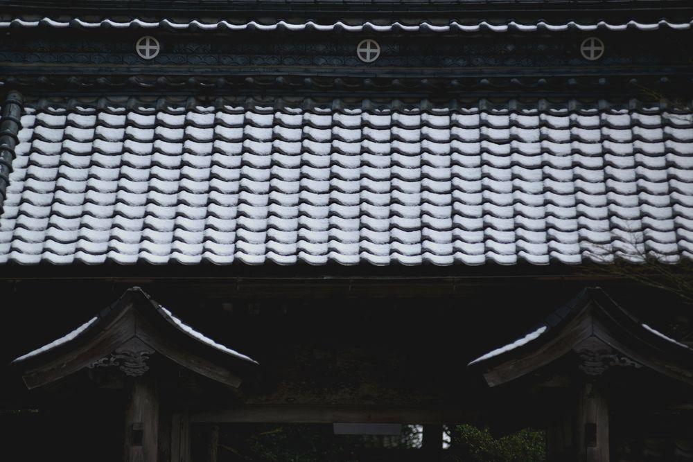 種月寺の屋根に-1