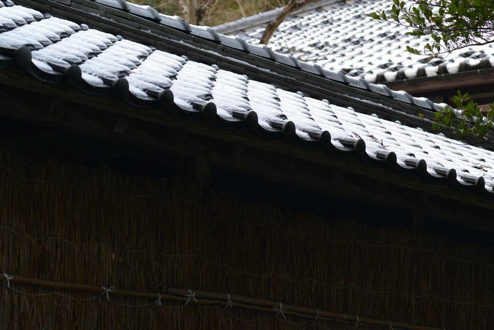 種月寺の屋根に-4