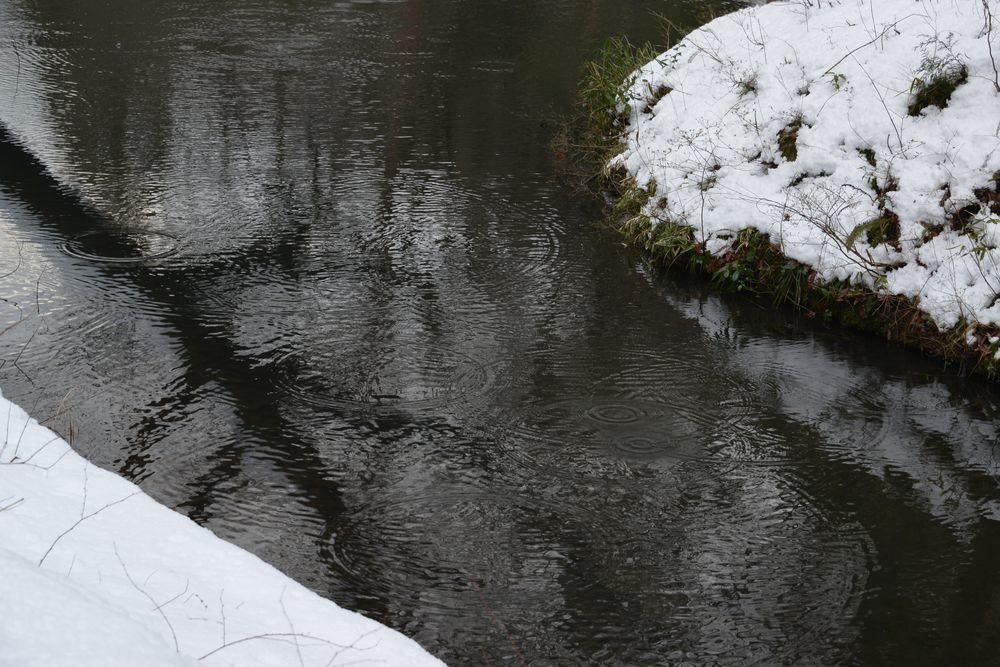 雪の池-2