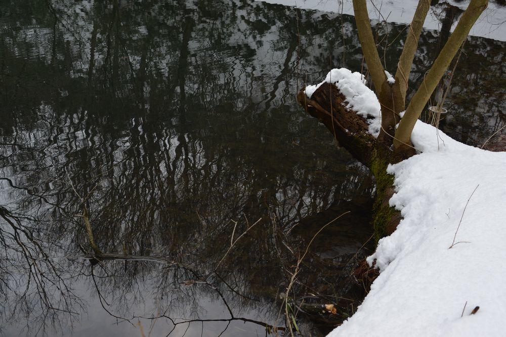 雪の池-4