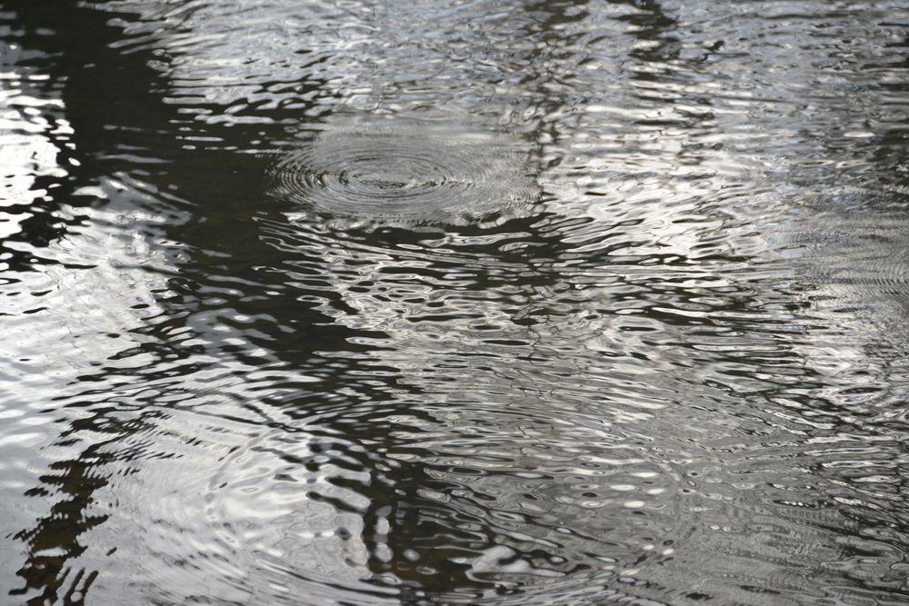 雪の池-5