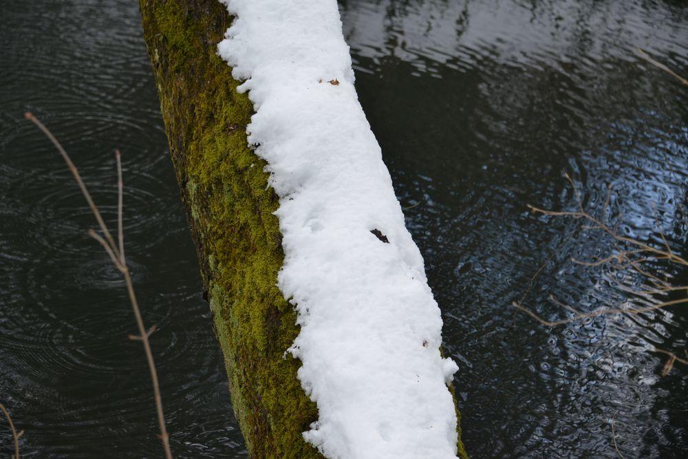 雪の池-6