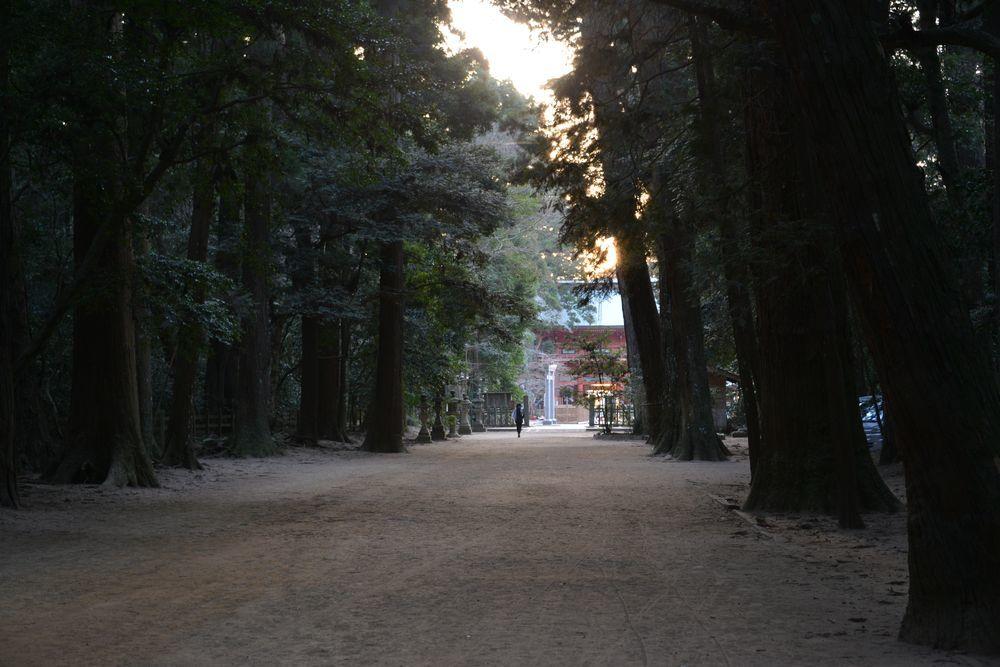 鹿島神宮-7