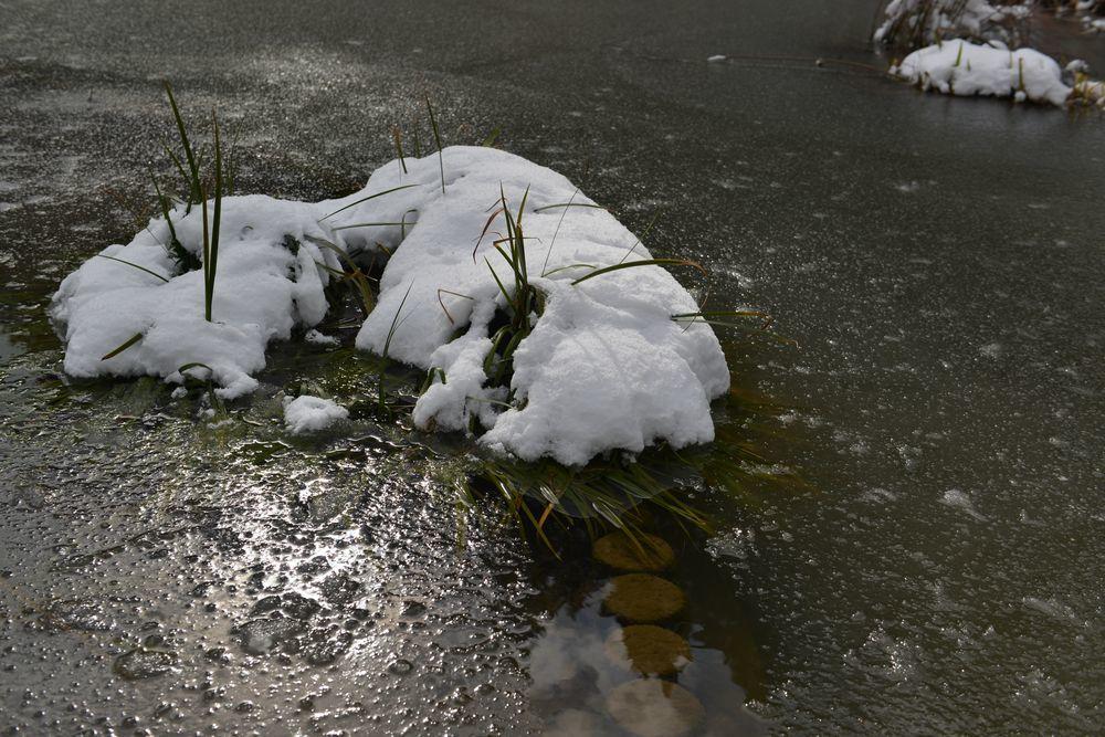 連休の雪-6