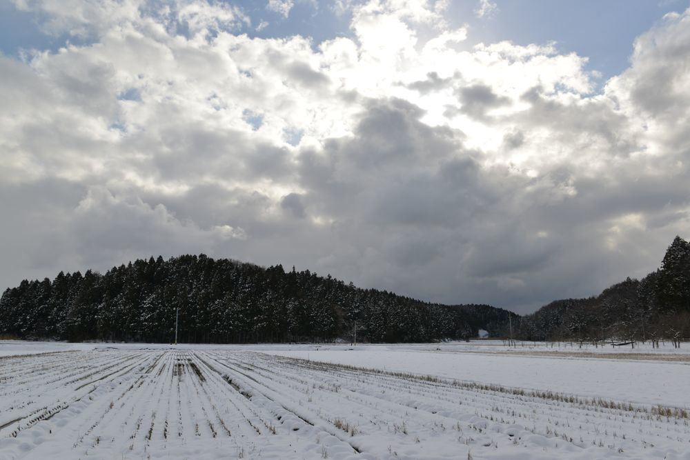 連休の雪景色-1