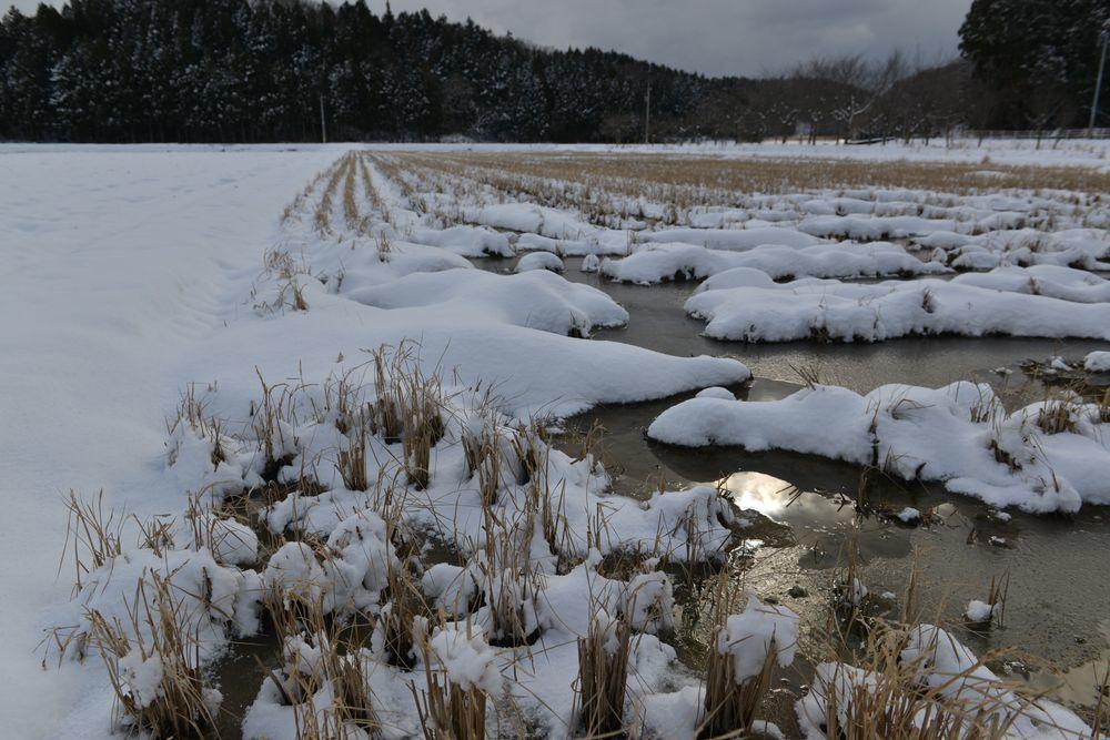 連休の雪景色-2