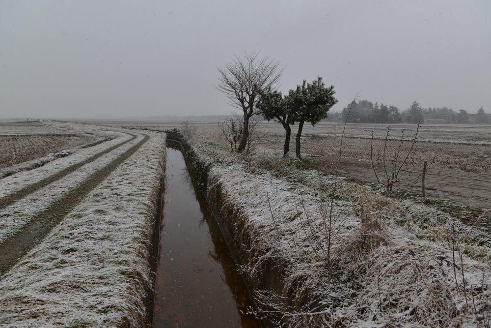 雪が降って来た-2