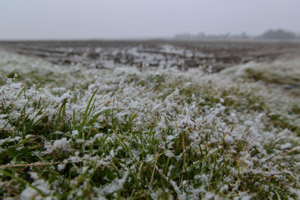 雪が降って来た-5