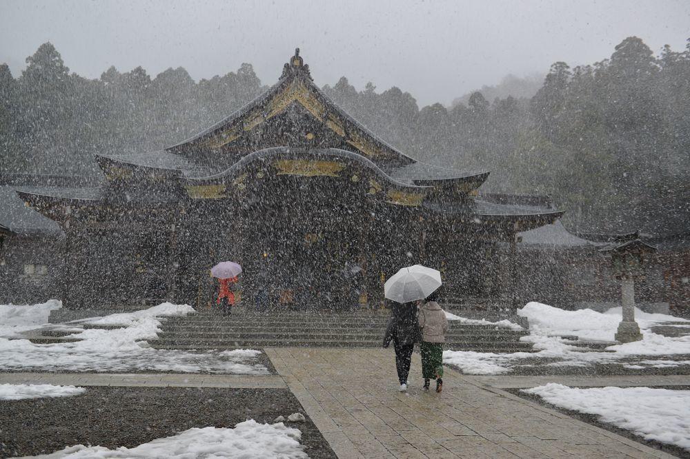 雪舞う神社-2