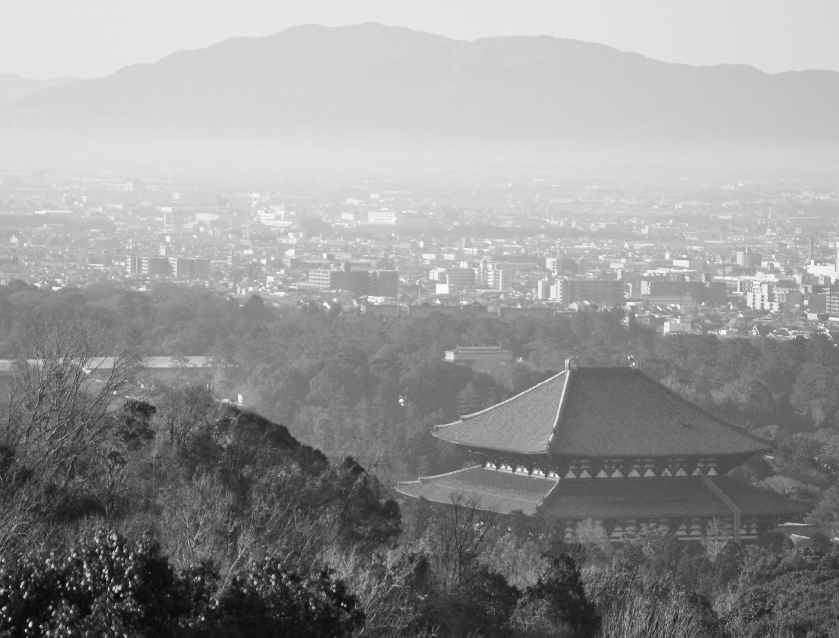 Nara on the first day of 2019