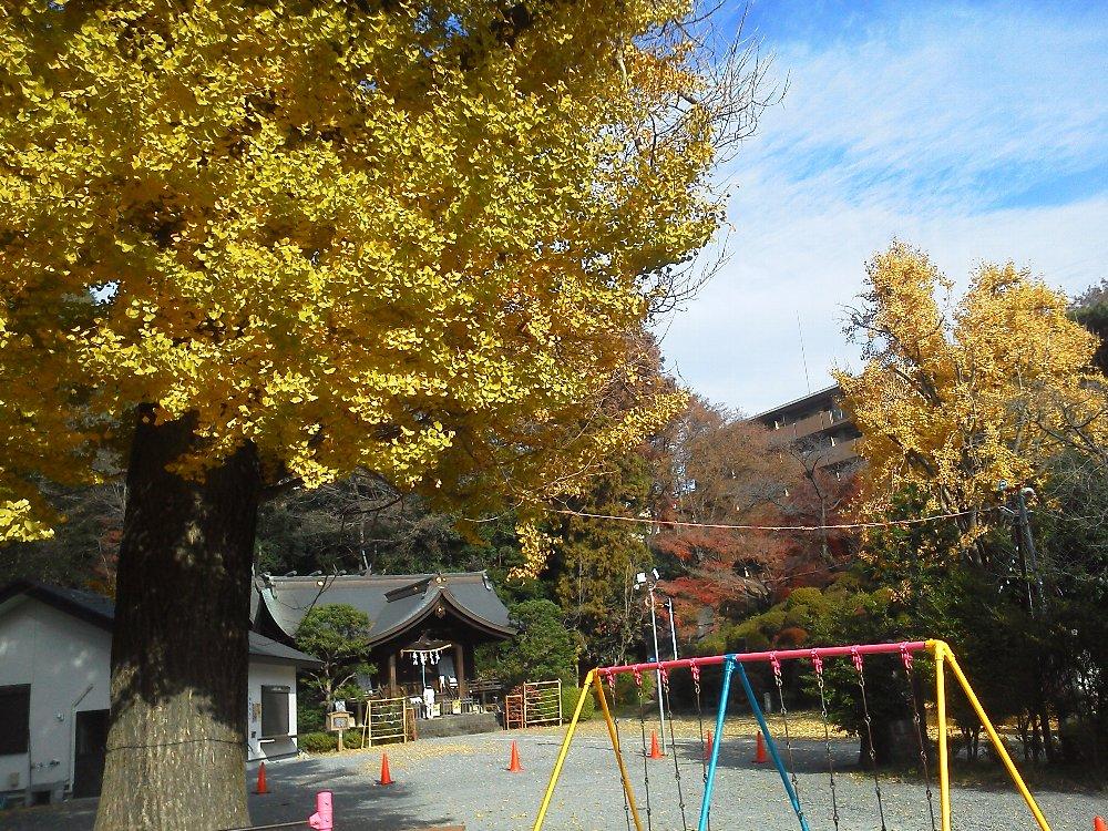 F1000560熊野神社12月20日