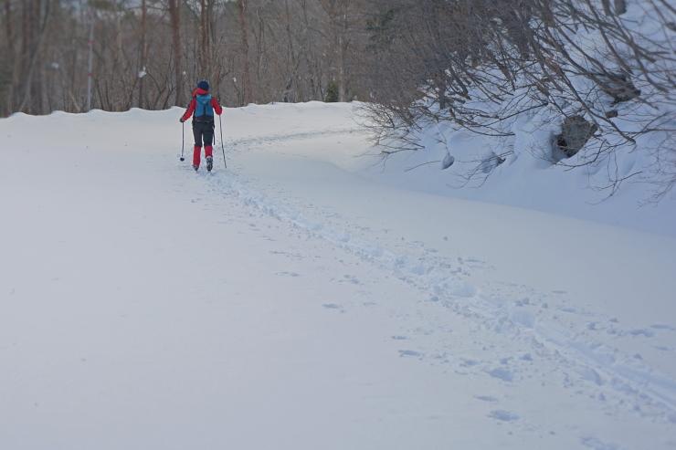 スカイラインをスキーで下る