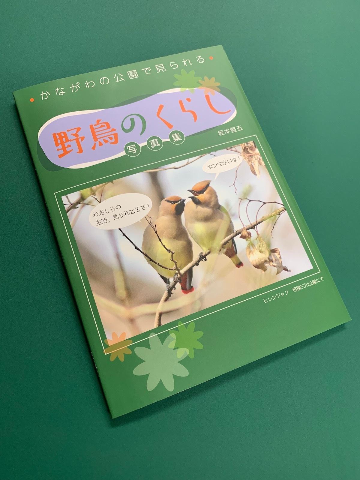 神奈川の公園で見られる野鳥のくらし表紙