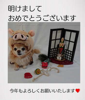 blog2019010101.jpg