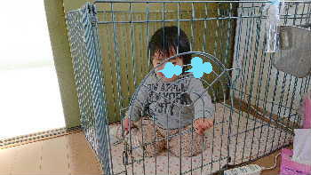 blog2019012903.jpg