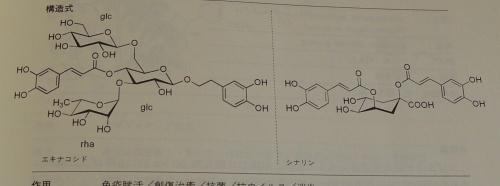 エキナセア 成分 化学式