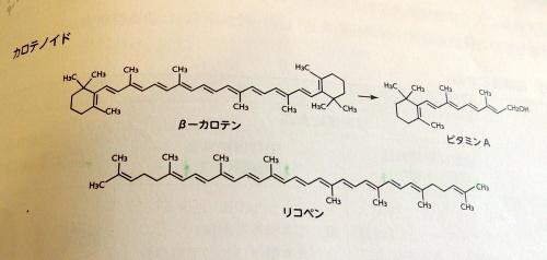 ポリフェノール化学式