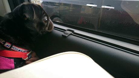 車窓から3