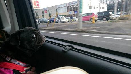 車窓から4