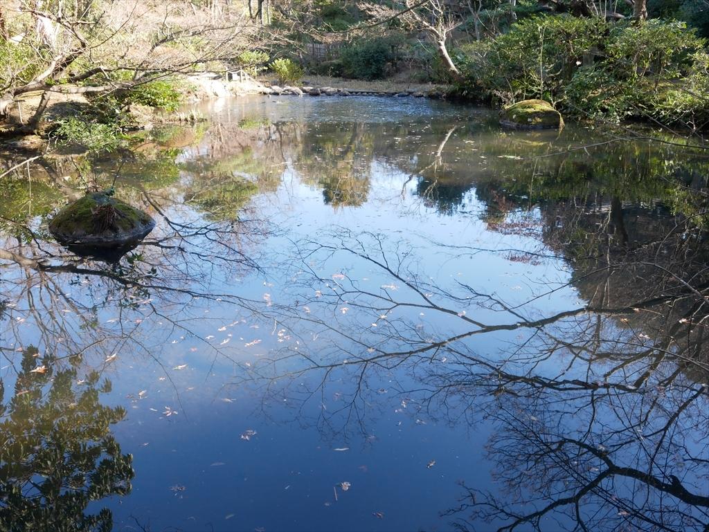 池を渡る_1
