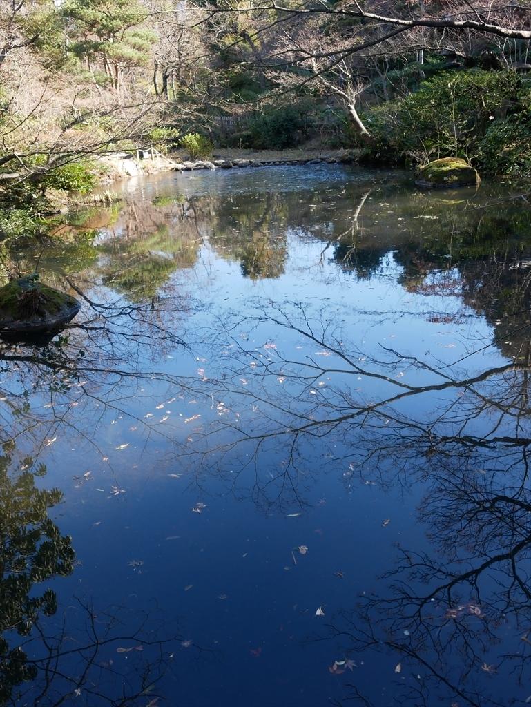 池を渡る_2