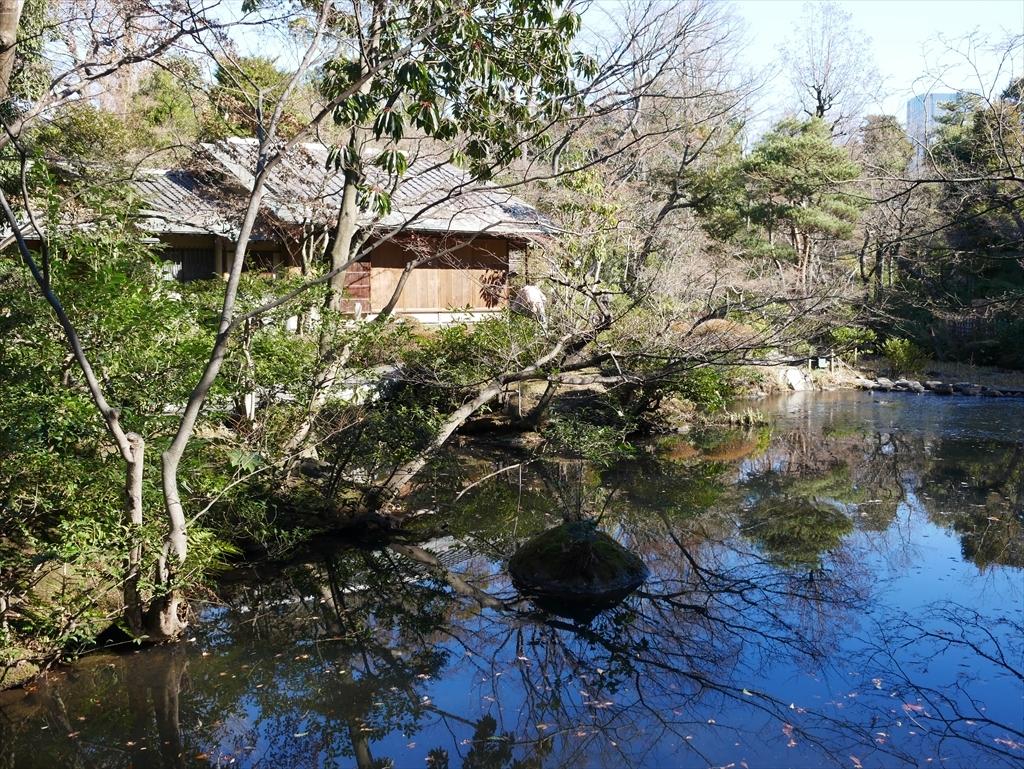 池を渡る_3
