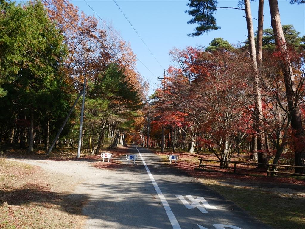 千本松牧場(1)_9