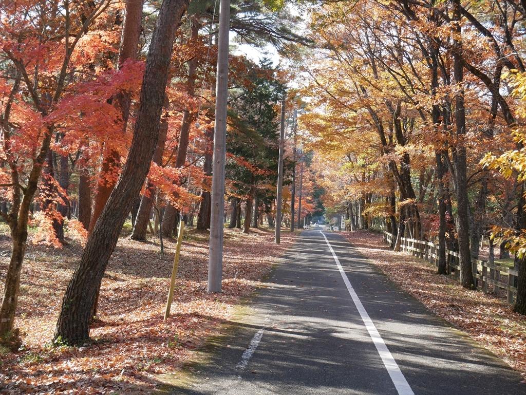 千本松牧場(1)_13
