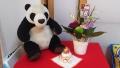 181231お飾りが寂しいので花とパンダを添える