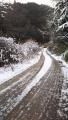 190202路面の凍結が酷く、引き返す