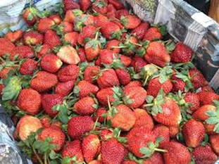 Market strawberries (1)