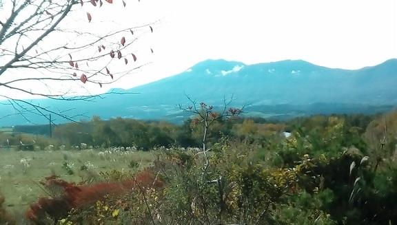庭先よりの浅間山です。