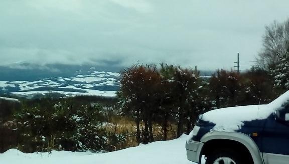 雪降りです。 12/12