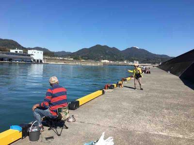 ゴリたん夫妻と由比港で雑魚釣り