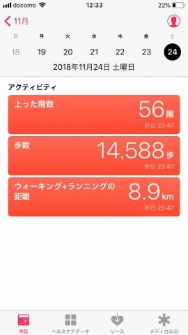 181124歩き (1)