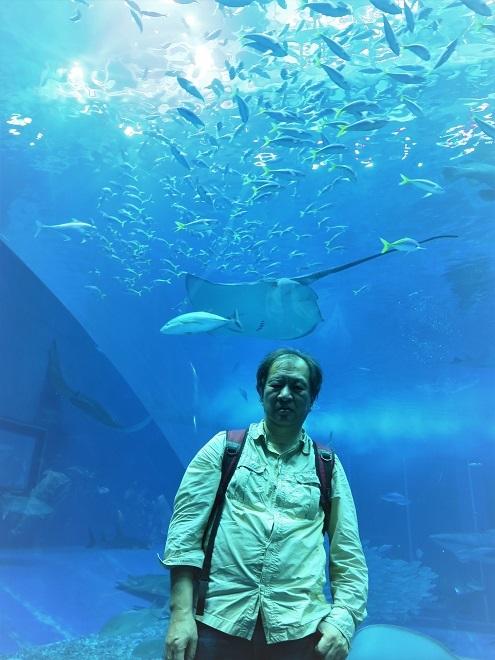 2018沖縄旅行_美ら海水族館(10)