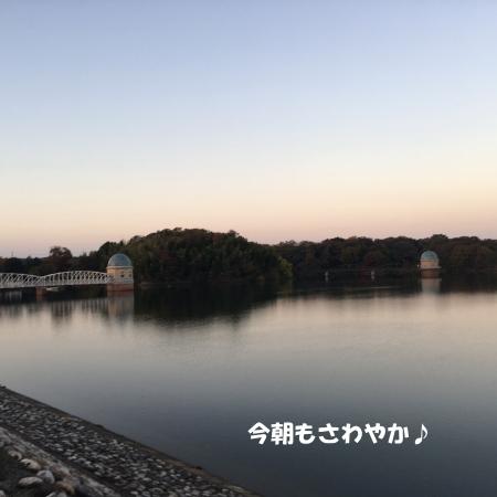 2018-11-28_2.jpg