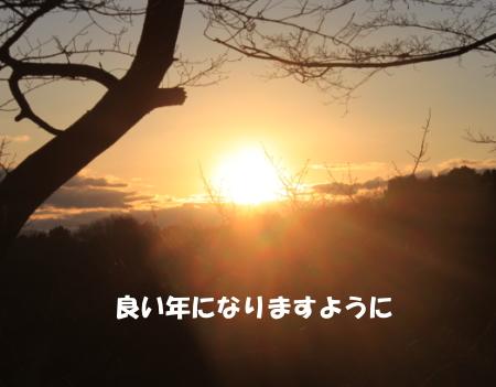 2019_01_01_3.jpg