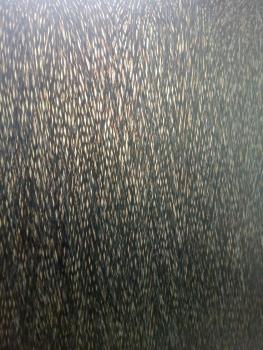 image30122005fa.jpg