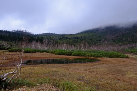 18栂池自然園