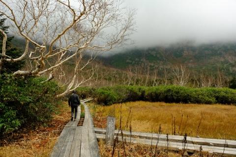21栂池自然園