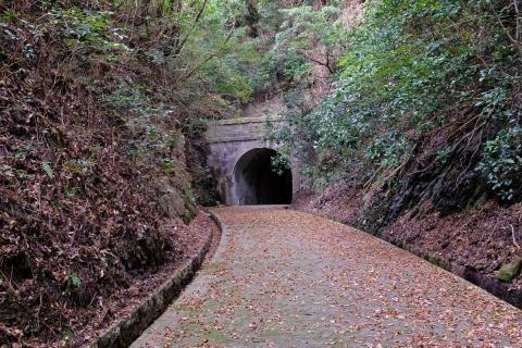 28宇津ノ谷トンネル明治