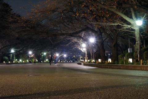 30上野公園