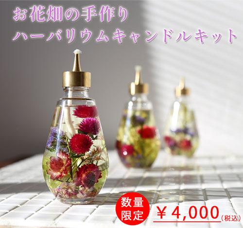 ohana_candle_02-1.jpg