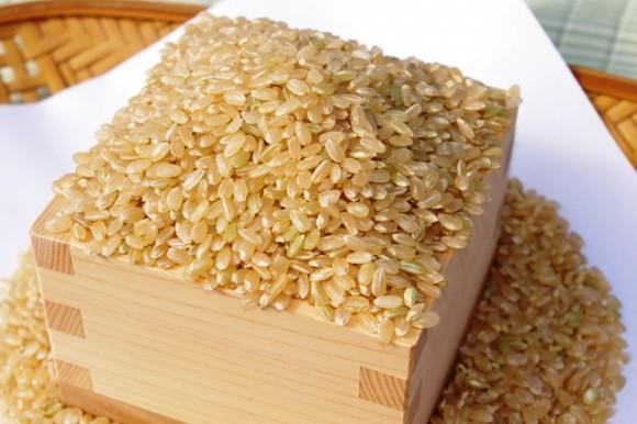 玄米-580x386