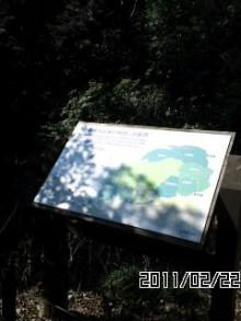 公明党 田中かすみ(香澄) オフィシャルページ-110222_1144~04.jpg