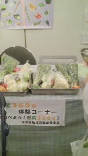 文京区議会議員 田中かすみ(香澄) オフィシャルページ-SN3P00180001.jpg