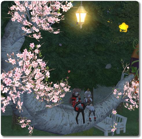 20181127桜